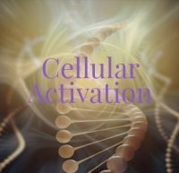 Cellular Activation