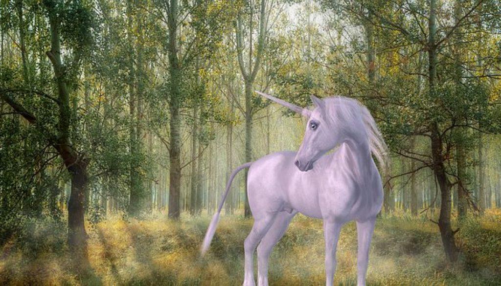 unicorn-1981219__340