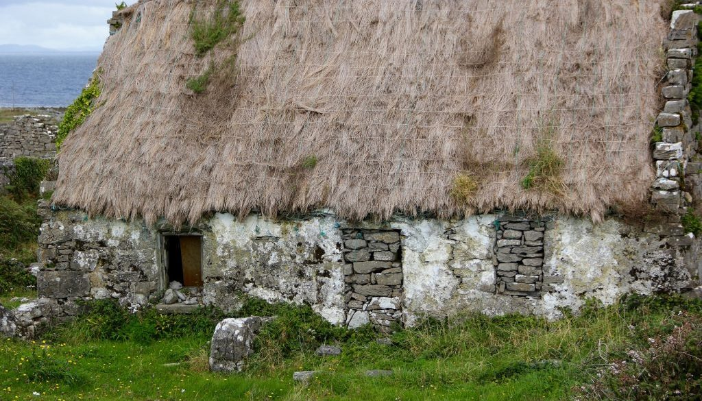 thatched-roof-981891_1920