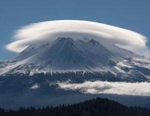 Mt Shasta Mimzy Project